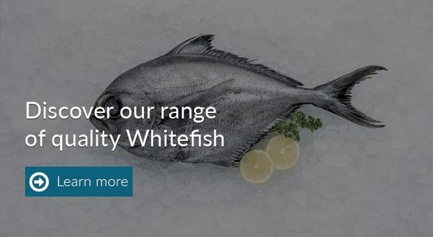 Product_whitefish21